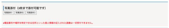 ヴェルニ メール鑑定